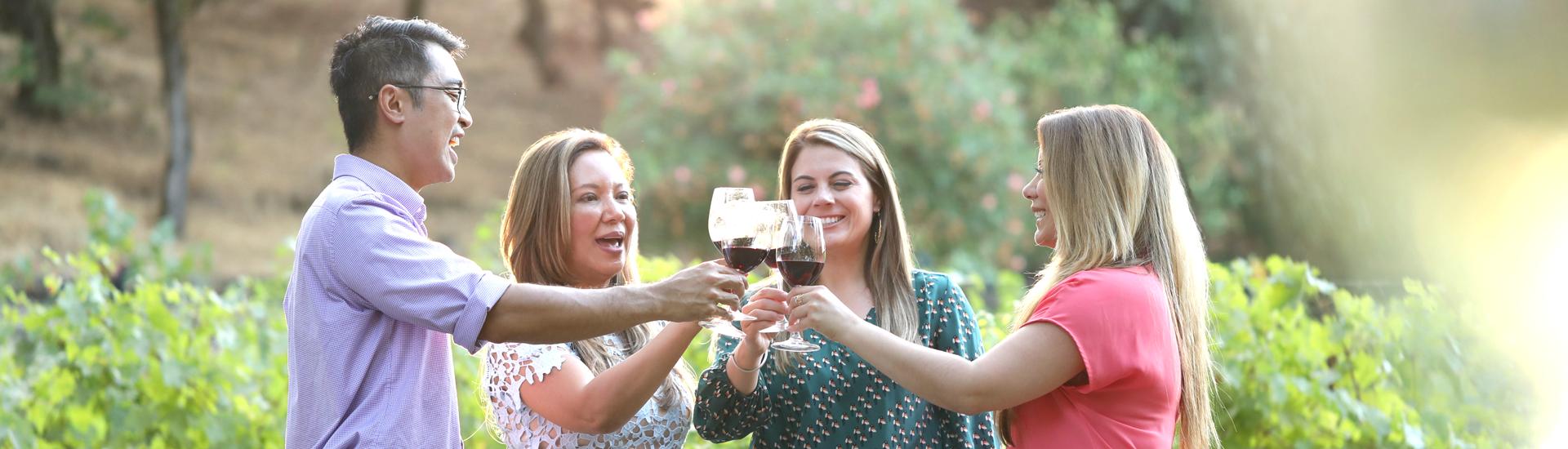 large group wine tasting napa valley