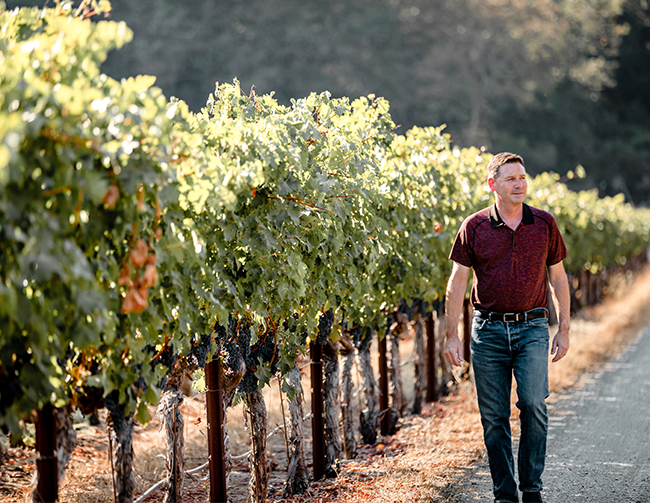 Mark Beringer Walking Through Vineyard