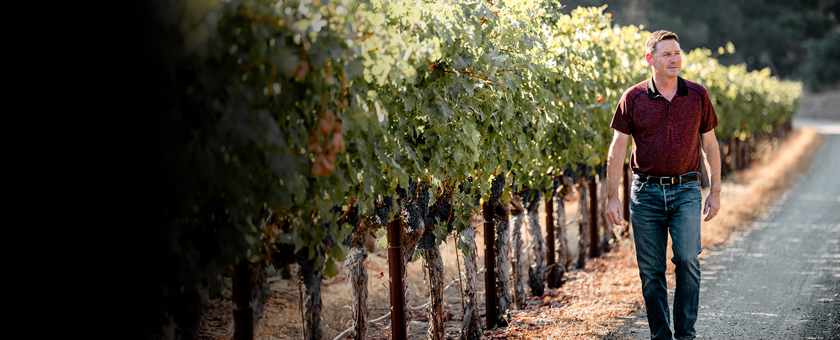 Mark Beringer in one of Napa's oldest vineyard sites