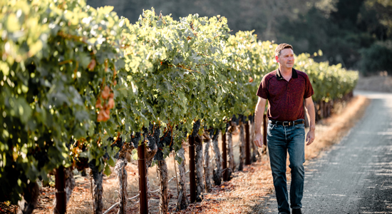 Mark Beringer in one of Napa's oldest vineyard sites